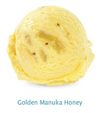Golden Manuka Honey